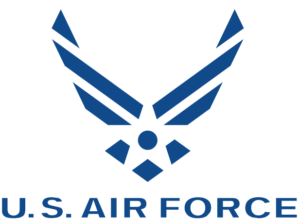 Air Force Symbol Cake Ideas and Designs